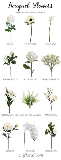 Essential white wedding flower guide names types pics white white wedding bouquet make your own wedding bouquet and floral centerpieces with artificial flowers from mightylinksfo