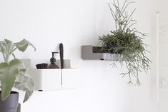 Via Musta Ovi | White Kitchen | Iittala Aitio Containers