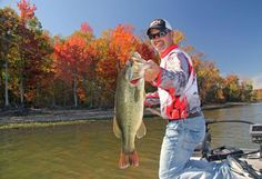 For planning purposes, a handful of FLW competitors helped share a rundown of their fall favorites in an effort to help anglers navigate this tricky season.