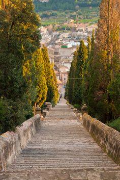 The famous Calvari steps in Pollença, 365 right to the top! #calvari #pollença #mallorca (Step Back)