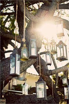 vintage lantern ceremony backdrop
