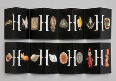 hat-trick design: horniman museum and gardens identity