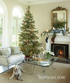 light filled arizona home decked for the holidays - Traditional Home Christmas Decor