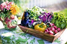 Vegetables, Garden, Harvest, Organic