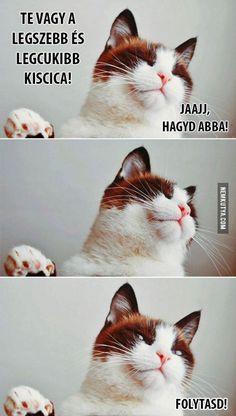 Hagyd abba! :)
