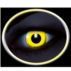 022816b21a9f De 24 bedste billeder fra Kontaktlinser