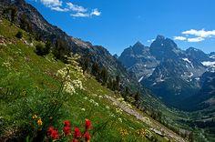 Paintbrush Cascade, Grand Teton National Park