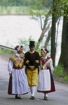 Tenala Tenala, Nyland Folkdräkter - Dräktbyrå - Brage Folk Clothing, Folk Costume, Folklore, Traditional Outfits, Finland, Sweden, Scandinavian, Culture, Embroidery
