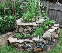 :: Permaculture Pathways ::: Get started growing a Herb Spiral – part 9