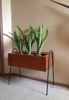 Kurrlson custom teak veneer planter box with custom side mount hairpin legs #kurrlson #hairpinbend #hairpinlegs