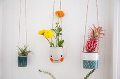 Pretty hanging pots