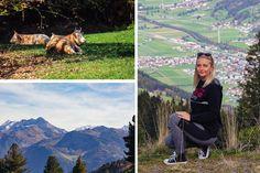 Lucinas Life - Ferienwohnung Schweiberer, Fügen, Zillertal #lucinaslife #zillertal #fügen #ferienwohnungschweiberer #unterkunft #ferien #reisen #reiseziele #appartment #ferienwohnung #tirol #tyrol #austria