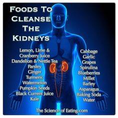 alimentos q eliminan toxinas