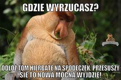 Janusz Nosacz - najlepsze memy o Januszu Nosacz, Grażynie Nosacz, Pioterze Nosacz i somsiedzie. Generator memów o Polaku. Wtf Funny, Funny Memes, Best Memes, Lol, Humor, Films, Movies, Humour, Funny Photos
