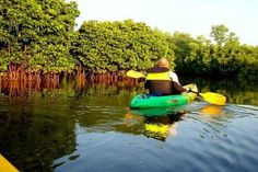 Goa Kayaking – kayak in the backwaters of Goa for an Enthralling Experience >> https://sites.google.com/site/365hopsadventures/goa-kayaking-kayak-in-the-backwaters-of-goa-for-an-enthralling-experience  #Goakayaking, #kayakIndia, #Kayaking, #Goa, #365hops, #India, #WaterSports, #backwatersofGoa #Kayak