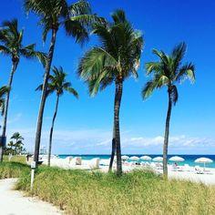 Happy #HumpDay beautiful people in Miami