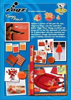 Story board ROGZ Tango Paws design