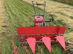 Mini rice harvester/wheat harvester/beans harvesting machine/chili harvesting machine/mini harvester (SLGS-90/120) - China mini harvester... Harvester, Chili, Beans, Projects To Try, Rice, Diy Crafts, Culture, Chile, Make Your Own