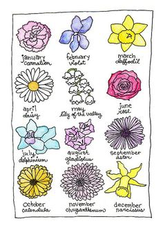 birth flowers for each month - Google Search