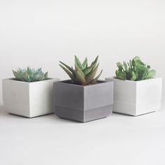 Conjunto de tres macetas suculentas concreto por NystromGoods