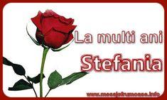 Felicitari de Sfantul Stefan - La multi ani Stefania - mesajeurarifelicitari.com