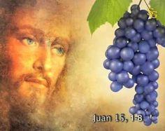 El que permanece en Mí y Yo en él ése da fruto abundante -  Lectura del santo evangelio según san Juan (151-8): -  En aquel tiempo dijo Jesús a sus discípulos: Yo soy la verdadera vid y mi Padre es el labrador. A todo sarmiento mío que no da fruto lo arranca y a todo el que da fruto lo poda para que dé más fruto. Vosotros ya estáis limpios por las palabras que os he hablado; permaneced en mí y yo en vosotros. Como el sarmiento no puede dar fruto por sí si no permanece en la vid así tampoco…