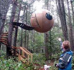 these are on vancouver island, so cool!