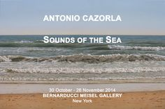 30 October - 26 November 2014, Bernarducci Meisel Gallery, New York