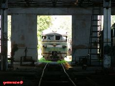 abandoned soivet trains in Sukhumi 21