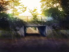光の方へ (To the Light) by げし (Geshi) #scenery #illustration
