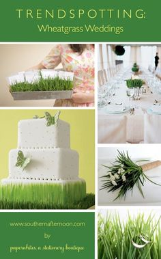 Wheatgrass wedding pinboard by paperwhites stationery boutique. Great ideas for centerpieces, a sweet butterfly cake, a cool ring photo and a unique table number display all featuring green grass.