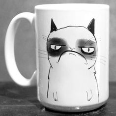 ha. grumpy cat. I don't get where this came from but i laugh at ever meme I see