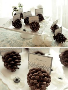 I would just use white placecards but the pinecone idea? Ah-dorable.