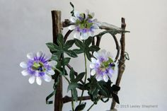 The passion flower is often used as an Easter symbol. Make this miniature version from paper and wire as a decoration.