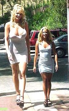 """World's biggest woman: from Holland, stands 7'4"""" (~223cm) tall, and weighs 320 lbs (145 kg)!"""