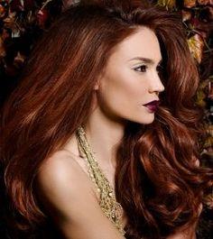 2010 Hair Color Ideas
