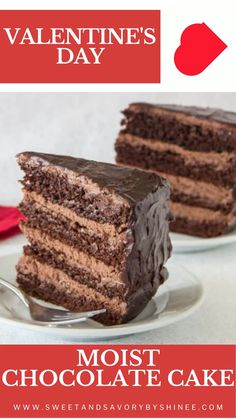 Gourmet Desserts, Cookie Desserts, Delicious Desserts, Dessert Recipes, Chocolate Mousse Cake, Best Chocolate Cake, Yummy Treats, Sweet Treats, Chocolate Delight