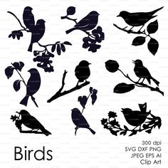 Three birds on the branch eps svg dxf ai jpg png от EasyCutPrintPD