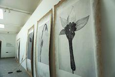 """Linarejos Moreno #Exposición """"Tabularia: laboratorios de ciencia e imaginación"""" Jardín Botánico #Madrid  #Fotogafía #Photography #PHE16 #PHOTOESPAÑA #Arterecord 2016 https://twitter.com/arterecord"""