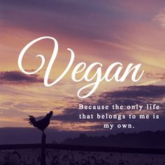 #vegan because the only life that belongs to me is my own