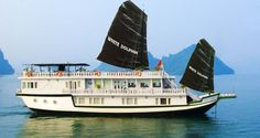 On the body of Halong Bay's the special Dolphin. It's so cool and great. Luxury White Dolphin Cruise - GoAsiaDayTrip