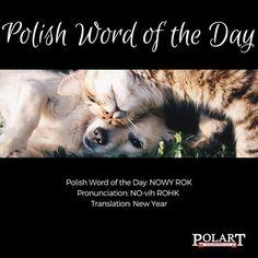 #NOWYROK #NewYear #Polish #PWOTD #PolishWordoftheDay #Poland #Polska #LearnPolish #Makeanewfriend The Third Man, Word Of The Day, Learn Polish, Morning Words, Polish Words, Polish Language, Sending Good Vibes, Good Morning World, Touching Stories