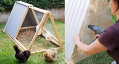 Comment fabriquer un mini poulailler Backyard Chicken Coop Plans, Chickens Backyard, Hoop House Chickens, Mini Farm, Permaculture, Animals And Pets, Outdoor Gardens, Diy And Crafts, Projects To Try