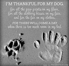 I dread the day. but there will always be fur kids in my home. I Love Dogs, Puppy Love, Cute Dogs, Puppy Pics, Funny Dogs, Dog Quotes, Animal Quotes, Dog Sayings, Wine Sayings