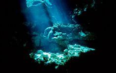 Google Image Result for http://www.travelvista.net/wp-content/uploads/2010/03/Scuba-Diving-Akumal-Mexico-10.jpg