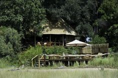 Safari at Kwetsani | African Safaris
