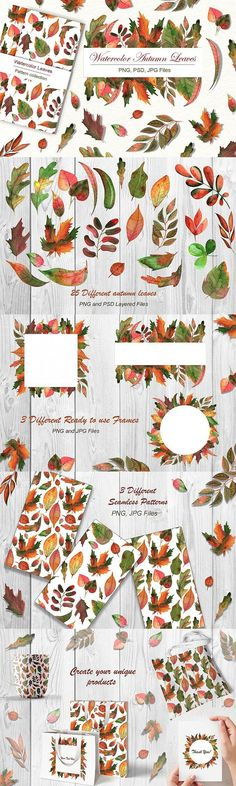 FREE Illustrations: Watercolor Autumn Leaves #free #decoration #freegraphics #leaves #card #patterns #illustrations #template #design #autumn #packaging #watercolor #DecorativeGraphic #graphic #graphicdesign #decorative Card Patterns, Graphic Patterns, Flower Patterns, Floral Design, Graphic Design, 5 Image, Free Graphics, Watercolor Design, Free Illustrations