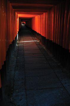 Torii gates of Fushimi Inari shrine, Kyoto, Japan 伏見稲荷 京都 Beautiful Islands, Beautiful Places, Places Around The World, Around The Worlds, Kobe Japan, Japanese Travel, Photos Voyages, Japanese Architecture, Rising Sun