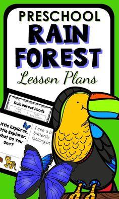 Preschool Centers, Preschool At Home, Preschool Classroom, Kindergarten Activities, Learning Activities, Preschool Learning, Teaching Science, Classroom Ideas, Rainforest Song