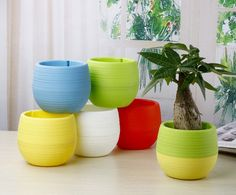 Description   Material: Plastic  Color: Red / Blue / White / Yellow / Green  Size: 7 x 6.5 cm / 2.76*2.56  Package included: 5 X Flower Pot (Plant